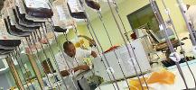 photo des produits sanguins labiles lors de leur pr�paration